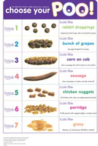 chart listing the different types of poop and how they relate to kids constipation