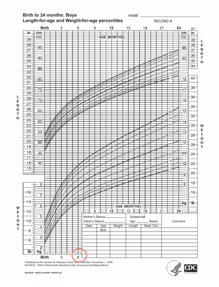 picture of a growth chart