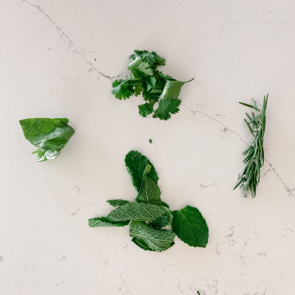 parsley, basil, rosemary and cilantro on counter